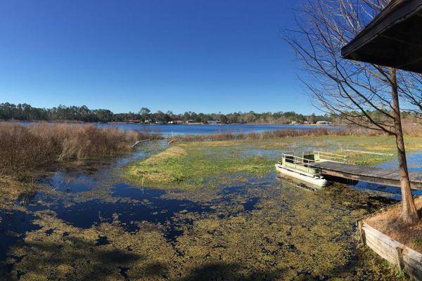 Lake Lynne Site