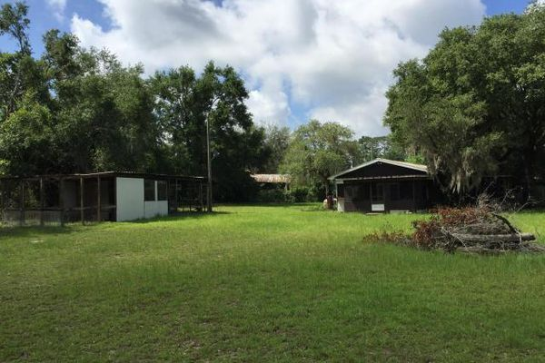 Ocala National Forest Campsites