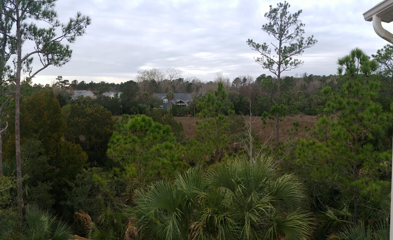 164 Palm Cove Way