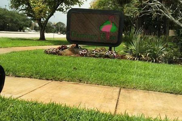 Flamingo Villas