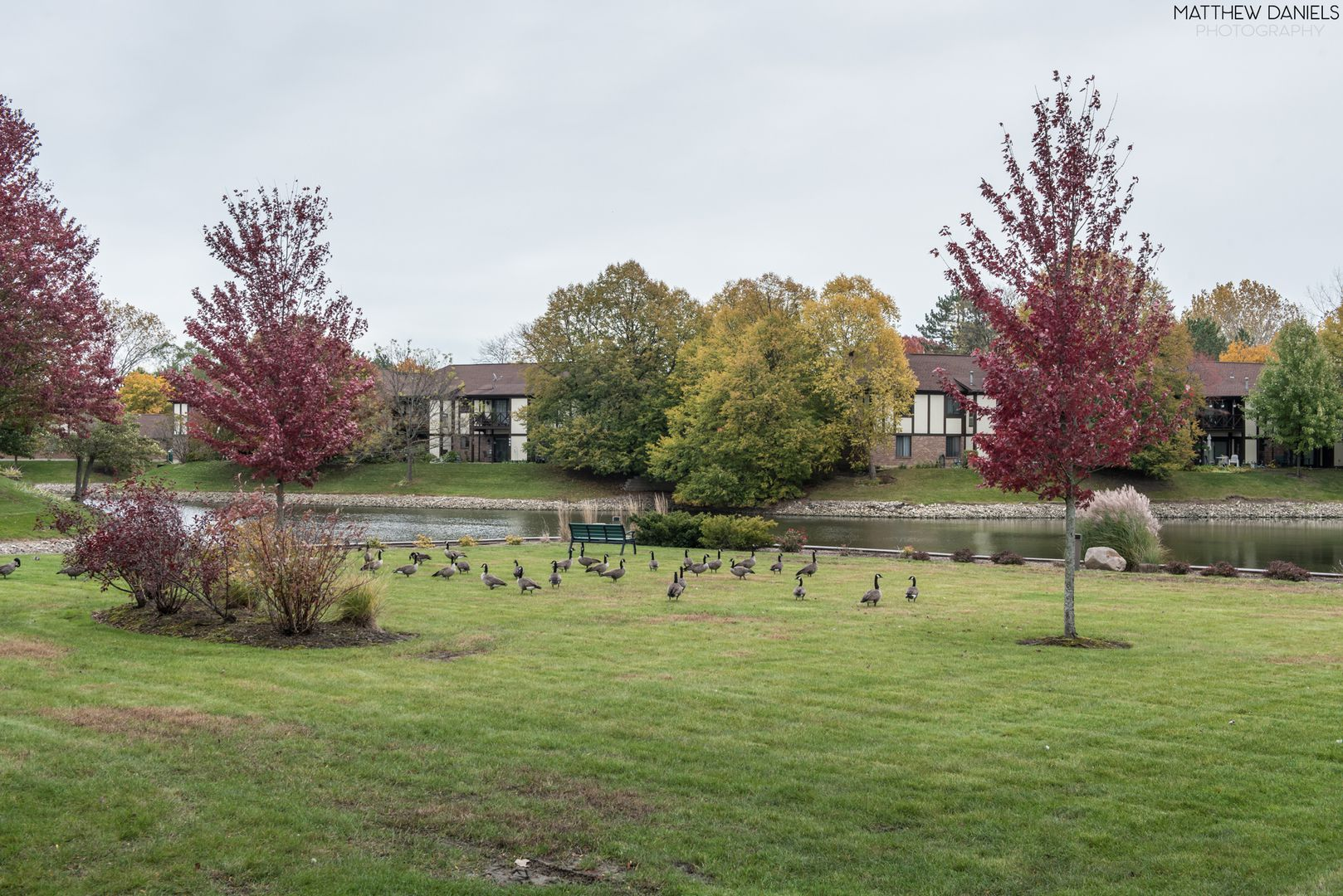1065 Creekside Court 2B