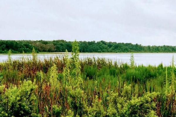 Little Lake Weir