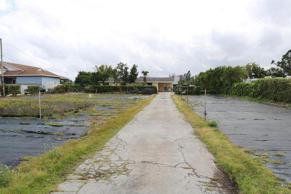 Palm Acres