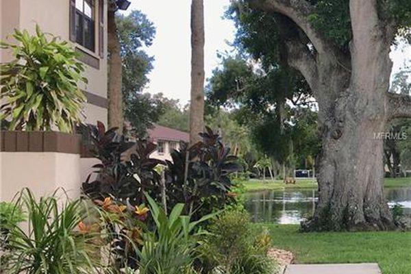 Oak Forest Condominiums