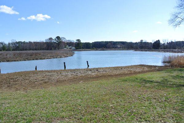 Woodland Point
